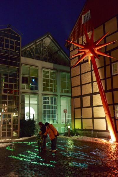 Hartung Trenz Lichtung 2012